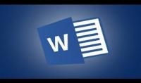 أستطيع كتابة جميع أنواع النصوص وتحويل ملفات الصوت والفيديو إلى نصوص بأحترافية و جودة