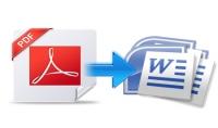 Convert PDF files to word