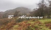 من تصويري 10 صور طبيعية من ريف بريطانيا خلابة...فقط بـ5$