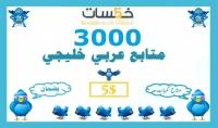 3000 متابع عربي خليجي لتويتر بضمان