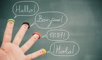 مترجم اتحدث العربية و الانجليزية و الايطالية بطلاقة