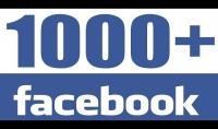 800 معجب لصفحتك علي الفيسبوك