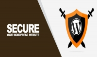 خبرة 7 سنوات في حماية wordpress