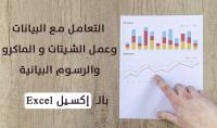 تفريغ البيانات وعمل الجداول والرسومات البيانية بالإكسيل