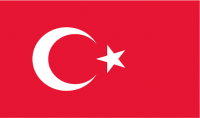 سأقوم بترجمة النص الذي تريد على ان لا يكون اكثر من صفحة الى اللغة التركية
