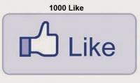 1000 معجب حقيقى لصفحتك 100%