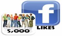 اكثر من 5000 معجب حقيقى لصفحتك فى الفيس بوك