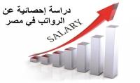أرسلك ملف إكسيل عن إحصائية الرواتب سلم الرواتب في مصر 2017