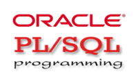 تعلم Oracle PL Sql