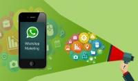 6000 رقم واتساب خليجي لتسويق خدماتك