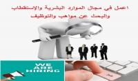 توفير وإستقطاب الموظفين المتميزين لشركتك  Recruitment
