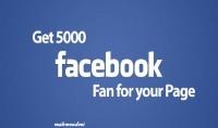 اقدم لك 5000 معجب حقيقي لصفحتك علي الفيسبوك