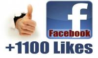 1100 معجب لصفحتك ب5 دولار فقط