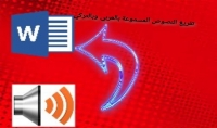 تفريغ النصوص المسموعة الى نصوص مكتوبة عربي تركي 5$لكل 5 دقائق