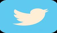 سأضيف 200 متابع خليجيين لحسابك في تويتر مقابل 5دولار فقط ٫