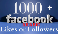 إضافة 1000 لايك عربي على صفحتك بالفيسبوك بسرعة وبجودة عالية