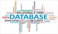 حل واجبات قواعد البيانات والبرمجة