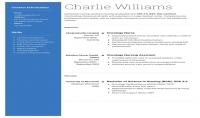write a professional cv