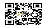 كتابة جميع الاوراق و ادخال البيانات و ابحاث الطلبة و كتابة الكتب