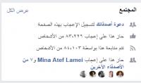 سوف اقوم بتزويد صفحتك في الفيسبوك 4000 متابع عرب   هدية