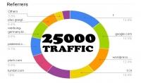 25000 زائر من جوجل ومحركات البحث و السوشيال ميديا لموقعك