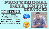 إدخال بيانات وكتابة الكتب والتقارير Data Entry and typing