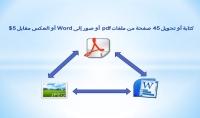 كتابة أو تحويل 45 صفحة من ملفات pdf أو صور إلى Word أو العكس
