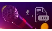 تفريغ الملفات الصوتية التى تحتوى على بيانات بكلتا اللغتين العربية الفصحى و العامية والانجليزية .