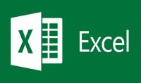 بإدخال البيانات المهنية في Excel