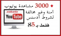 3000 مشاهدة حقيقية و أمنة في اليوتيوب
