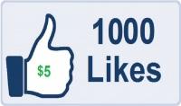 اضافة 3000 لايك عربي الي صفحتك   هدية خاصة لاول 25 مشتري