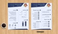 كتابة وتصميم سيرة ذاتية احترافية CV