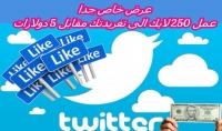 250 لايك من حسابات عربية نشطة حقيقية 100% لحسابك فى تويتر