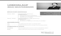 ترجمة وكتابة سيرتك الذاتية او طلب عمل من والى الالمانية
