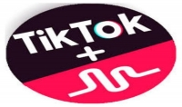 300 لايك على أحدث تطبيق Tiktok