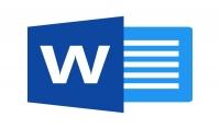 إدخال و كتابة نصوص على شكل WORD أو جداول على شكل EXCEL