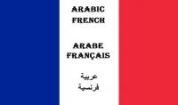 الترجمة من اللغة الفرنسية للعربية و العكس.