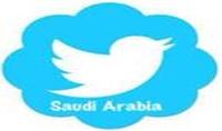 أحصل على 350 متابع عربى خليجى حقيقى لهم صوروتغريدات لا يقل عددهم نهائيا