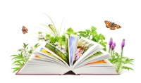 اصنع غلاف كتاب رقمي بتقنية 3ابعاد و تصميم حديث و جذاب   .