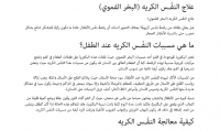 ساقوم بترجمة 300 كلمة بين العربية و الانجليزية