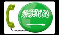تسليمك ملف يحتوى أكثر من 20 مليون رقم هاتف للدول العربية للتسويق .