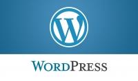 تركيب سكربت wordpress