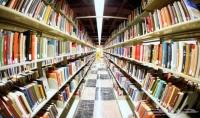 كتابة أبحاث باللغة العربية في جميع المجالات