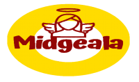تصميم شعار احترافي  quot;Professional logo design quot; لشركتك قناتك صفحتك أو مؤسستك