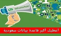10 مليون رقم سعودي مصنفين للتسويق