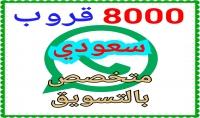8000  قروب واتس أب سعودي متخصص بالتسويق