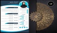 كتابة سيرة ذاتية احترافية بالانفوجرافيك باللغتين العربية والانجليزية