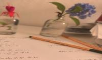 ترجمة 500 كلمة من اللغة الألمانية إلى اللغة العربية خلال يومين