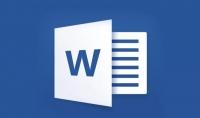 ادخال بياناتادخال20 صفحة في برنامج Microsoft Word مع تنسيق ب 5$