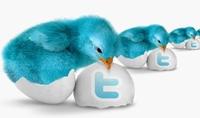 50 تويترعربي مفعل بالميل له صور و 100 فولورز خليجي تغرد تلقائيا بالأذكارمع برنامج لعمل الفولو و التويت